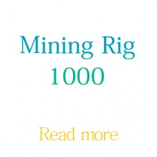 Colocation Mining Rig -1000