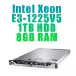 Dedicated Server E31225V5-1