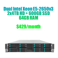 Read More, Dedicated server DE52650V3-3