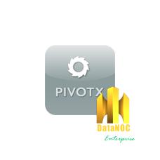DWS-PivotX